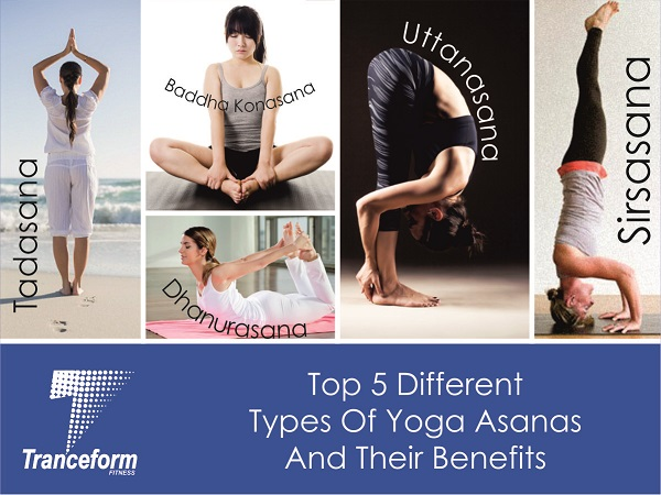 Best Yoga Classes In Pune top 5 yoga asanas tranceformfitness.com